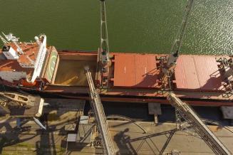 Рынок зерна: цены в портах и экспорт