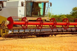 Сбор зерна в Тамбовской области превысил 4,3 млн т