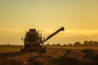 В Смоленской области убрано 50% площади под зерновые