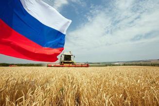 Минсельхоз: Россия укрепит свою позицию на международном продовольственном рынке