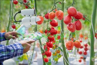 50 новых образовательных программ по сельскому хозяйству создадут в центре «Агротехнологии будущего»
