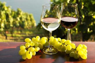 Продажи отечественного вина на акции «Дни российских вин» выросли на 30–50%
