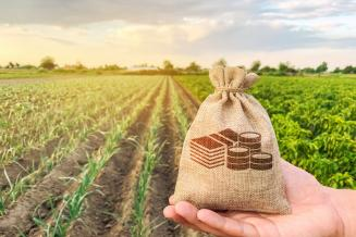 В Республике Алтай на поддержку фермеров в 2020 году выделено свыше 43 млн руб.