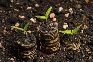 Аграрии Калмыкии получили из федерального бюджета 672,9 млн руб. господдержки