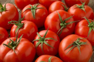 Россия увеличивает экспорт тепличных овощей