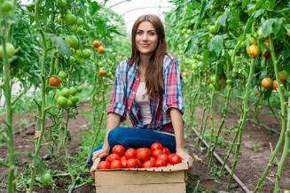 С начала года грантовую поддержку получили 1 340 начинающих фермеров