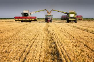 В Брянской области убрано свыше 400 тыс. га зерновых, или 74,6% от плана