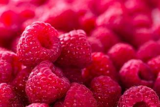 «ЭКО-культура» вложит 14 млрд рублей в производство ягод