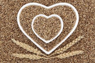Минсельхоз США повысил прогноз урожая пшеницы вРоссии на5млн т