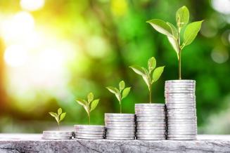 Калининградские аграрии получили 949,54 млн руб. господдержки из федерального бюджета