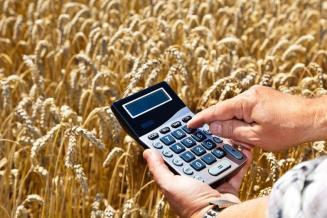 Аграрии Новгородской области получили господдержку из федерального бюджета в размере 494,92 млн руб.