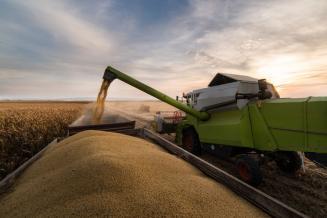 В Краснодарском крае собрали 12,5 млн т зерновых