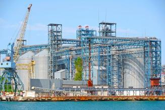 РФ экспортировала 4,8 млн т сельхозкультур из портов Азово-Черноморского бассейна в октябре