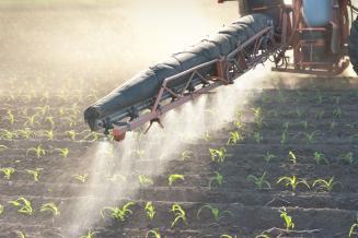 Россельхознадзору вернут контроль за обращением пестицидов и агрохимикатов