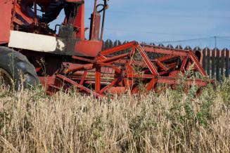 К11 ноября вТамбовской области намолочено 18,5 тыс.т овса