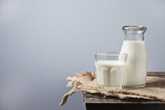 Сельхозорганизации Мордовии увеличили производство молока