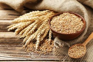 Ростовская область увеличила экспорт зерновых на 31,6%