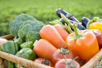 На Ставрополье завершается уборка овощей открытого грунта