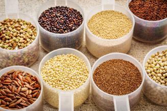 В госреестр селекционных достижений включены 6 новых сортов сельхозкультур саратовской селекции