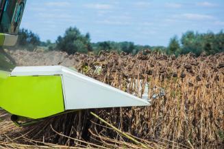 В Калмыкии завершается уборка урожая