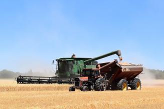 В Новосибирской области завершена уборочная кампания: намолочено 2,65 млн т зерна