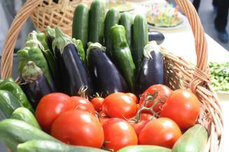 К 9 ноября сбор тепличных овощей в Липецкой области превысил показатель за весь 2019 год