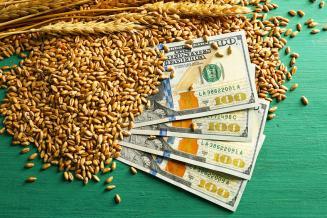 Минсельхоз США повысил прогнозы по урожаю и экспорту пшеницы из России еще на 0,5 млн т