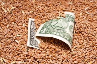 Башкирия нарастила поставки сельхозпродукции за рубеж на 44,8%