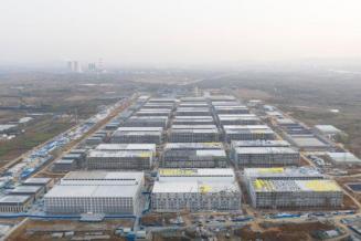 Китайская Muyuan строит крупнейший в мире свинокомплекс на 84 тыс. животных
