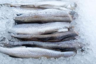 За 11 месяцев 2020 года из Приморья экспортирована рыба и морепродукты на 1,3 млрд долл.