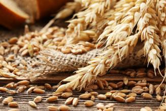 В Пензенской области урожай зерновых и зернобобовых на 74,1% превысил прошлогодний