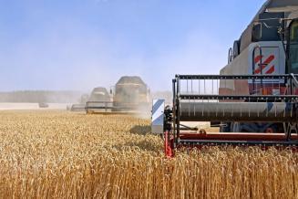 Российские аграрии завершили уборку зерновых