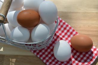Костромская область — четвертая в ЦФО по производству куриных яиц