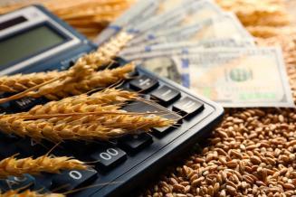 Правительство снизило ставки по льготным кредитам для МСП и самозанятых