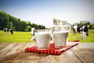 Минсельхоз ожидает роста производства молочной продукции в РФ в 2021 г. на 1,9%