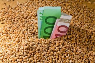 М. Мишустин подписал постановление об экспортных пошлинах на зерно