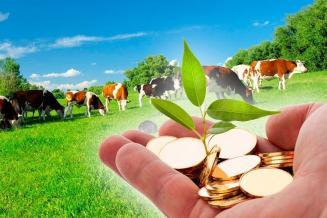 В 2020 году на развитие АПК Чувашии было направлено 1,2 млрд руб. господдержки