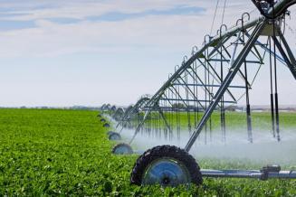 Господдержка развития мелиорации сельхозземель Подмосковья в 2020 году составила 346 млн руб.