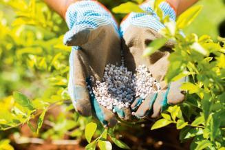 Производство удобрений в РФ в 2020 году поставило рекорд