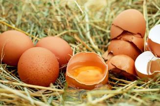 В Ивановской области самые низкие цены производителей на яйца в ЦФО