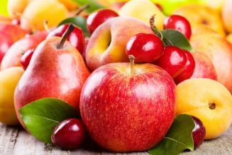 В России собрали рекордный урожай плодов и ягод