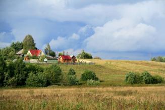 В 2020 году в Калининградской области на развитие села было выделено 206,8 млн руб.