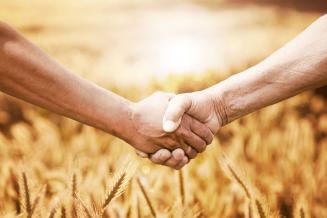 В 2020 году в Башкирии появилось 52 новых сельскохозяйственных потребительских кооператива