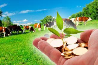 До аграриев Рязанской области в2020году доведено почти 1,8млрдруб. господдержки