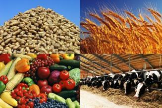 Подведены предварительные итоги работы калужских сельхозпредприятий за 2020 год