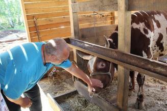 КФХ Ярославской области увеличили производство молока в 9,2 раза, скота и птицы на убой— в 5 раз
