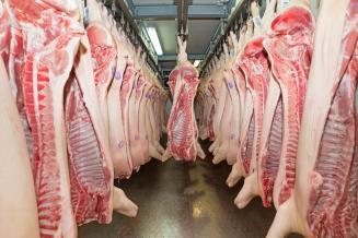 «Газпромбанк»: Россия вошла в пятерку крупнейших мировых производителей свинины