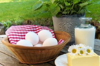 В 2020 году сельхозорганизации Костромской области нарастили производство молока на 8,7%