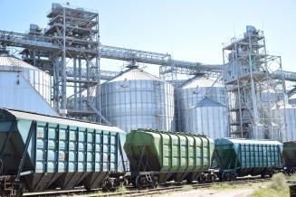 В 2020 году на Алтайский край пришлось 6,7% общероссийского экспорта масличных