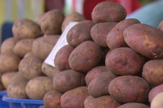 В Адыгее снизились потребительские цены на картофель